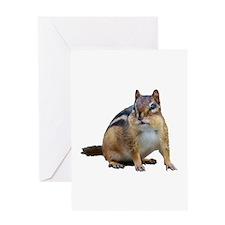 Chipmunk. Greeting Cards