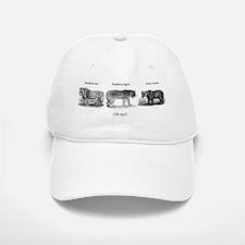 Lion/Tigers/Bears Baseball Baseball Cap