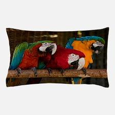 10418111 Pillow Case