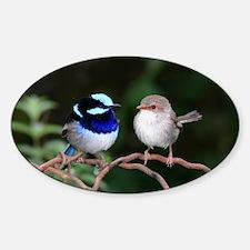 Blue Fairy Wrens Sticker (Oval)