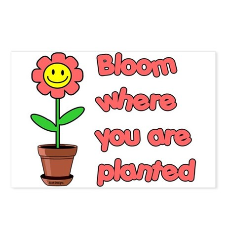 Bloom Where U R Planted Postcards (Package of 8)