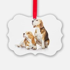 Two beagle dogs isolated on white Ornament