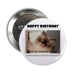 HAPPY BIRTHDAY (NAUGHTY CAT LOOK) Button
