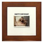 HAPPY BIRTHDAY (NAUGHTY CAT LOOK) Framed Tile