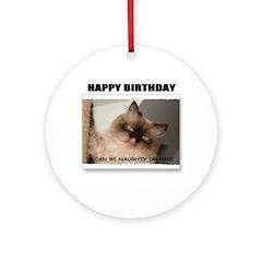 HAPPY BIRTHDAY (NAUGHTY CAT LOOK) Ornament (Round)