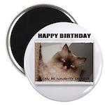 HAPPY BIRTHDAY (NAUGHTY CAT LOOK) Magnet