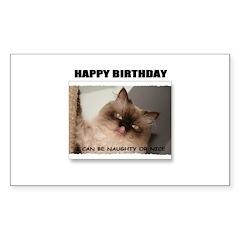 HAPPY BIRTHDAY (NAUGHTY CAT LOOK) Decal