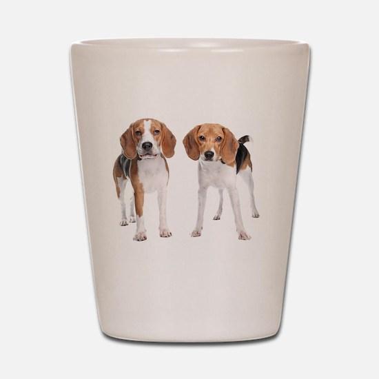 Two Beagle Dogs Shot Glass