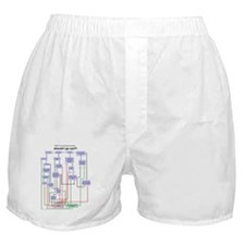 Pumping Flowchart: Should I Go Out? Boxer Shorts