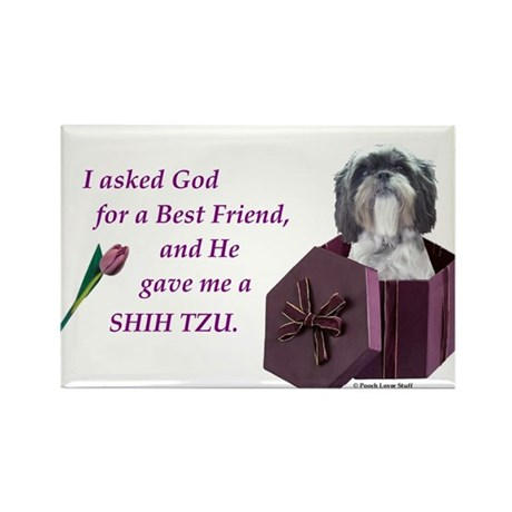 Shih Tzu (White, Black, Gray) Rectangle Magnet (10