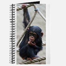 Cute Primates Journal
