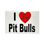 I Love Pit Bulls Rectangle Magnet (10 pack)