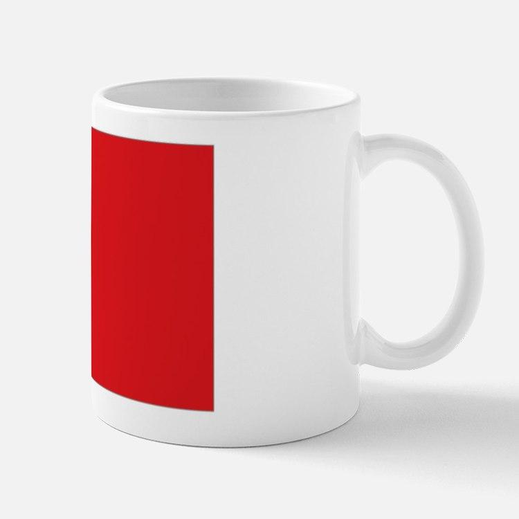 ROC flag Mug