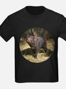 Tasmanian Devil T