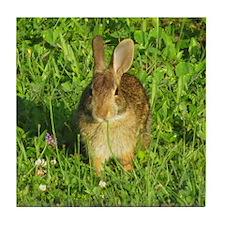 Rabbit Eating Weeds Tile Coaster
