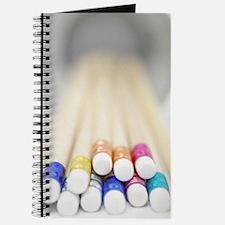Multi-Pencil Journal