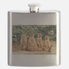 Unique Meerkat Flask