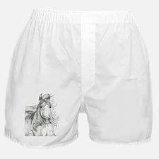 Freedom Phantom Boxer Shorts