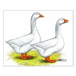 Embden Geese Small Poster