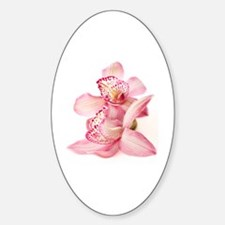 two pink orchids on white Sticker (Oval)