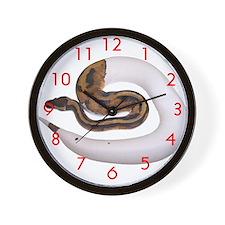 Cute Python Wall Clock