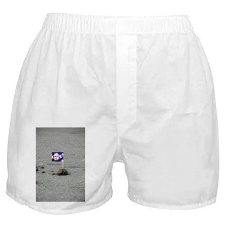Busher Shorts