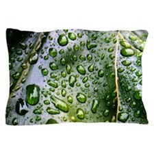 Cute Water frogs Pillow Case