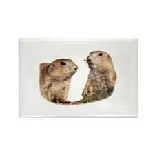 Prairie Dog and Wasp Magnets