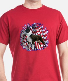 Boston Patriotic T-Shirt