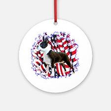 Boston Patriotic Ornament (Round)