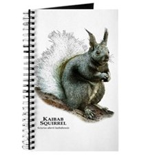 Kaibab Squirrel Journal