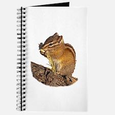 Cool Sage Journal