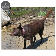 shake it off Puzzle