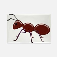 Shiny Brown Ant Magnets