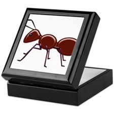 Cute Bug Keepsake Box