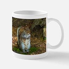 Grey Squirrel Mugs