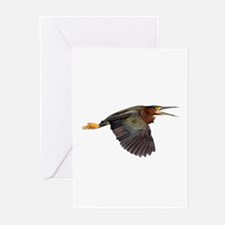 Green Heron Greeting Cards