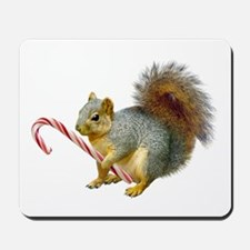 Squirrel Candy Cane Mousepad