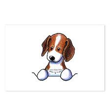 Pocket Beagle Postcards (Package of 8)