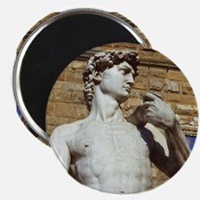 Michelangelo's David Statue Magnets