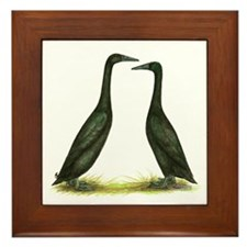 Black Runner Ducks Framed Tile