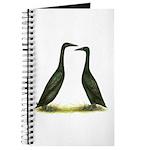 Black Runner Ducks Journal