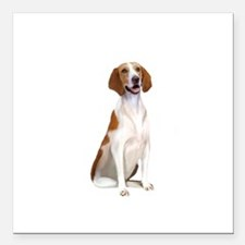 "AmericanFoxhound1 Square Car Magnet 3"" x 3"""