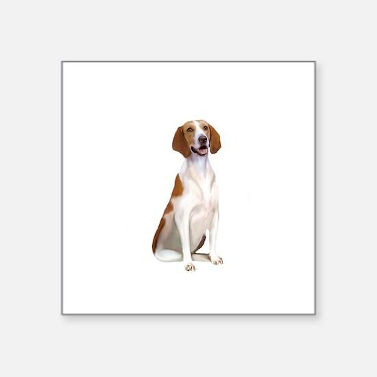"AmericanFoxhound1 Square Sticker 3"" x 3"""