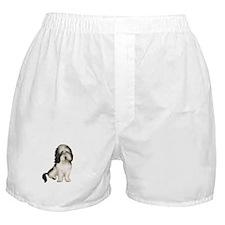 Petit Basset (brn-W) Boxer Shorts