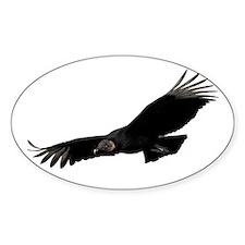 Black Vulture Decal