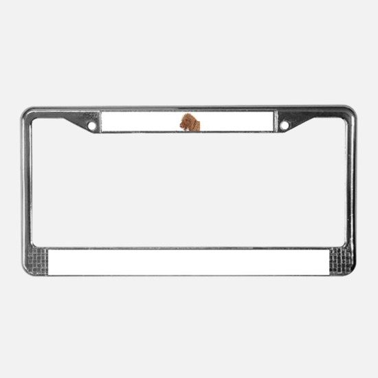 Chocolate Labradoodle License Plate Frame