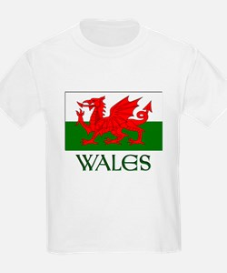 For the love of Wales! T-Shirt