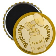 Gold Award (1 Year) Magnets