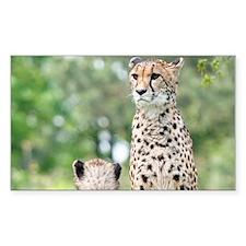 Cheetah004 Decal